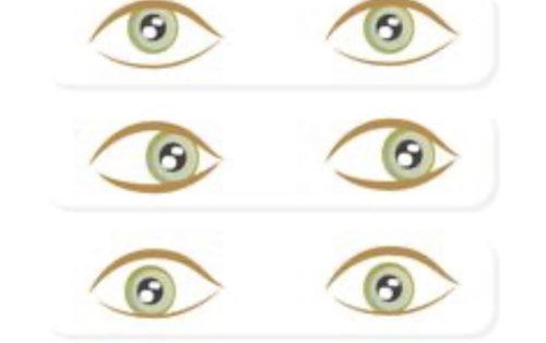 Mu Gong ou qi gong des yeux